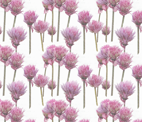 Pink Chives    fabric by koalalady on Spoonflower - custom fabric