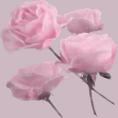 Pink Drifting Roses