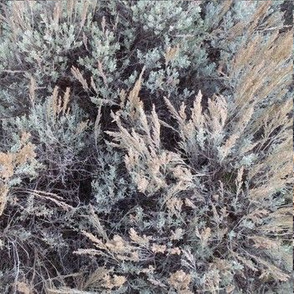 Sagebrush camo