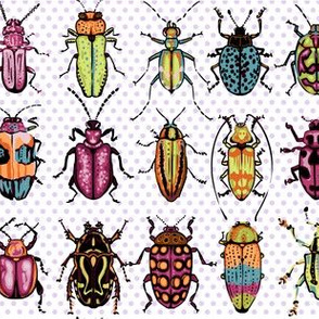 Beetles - magenta lime orange