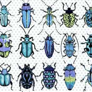 Beetles - blue green