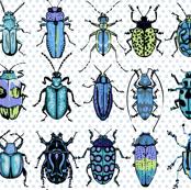 Beetles - blue green