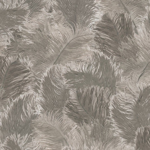 Ostrich Feather - large grey