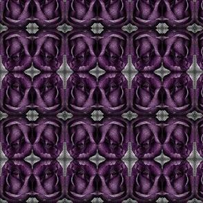 purple_rose-ed