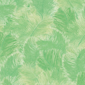 Ostrich Feather - large jade