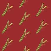 Mantis on Red