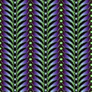 featherstripe violets