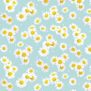Daisies on aqua
