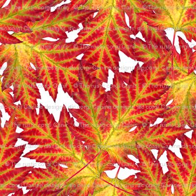 Electric Leaf