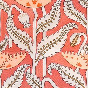 Antique Poppy in Coral