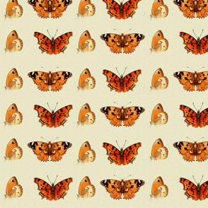 ButterflyFabric1
