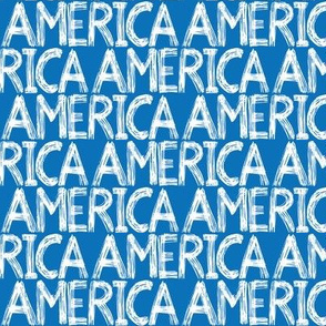 Graffiti Scribble America Blue 1