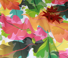 Rfall_leaves_3_res._36_comment_381533_thumb