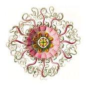 Rrjellyfish__peromedusae___tablet_38__ernst_haeckel__kunstformen_der_natur__artforms_of_nature_shop_thumb