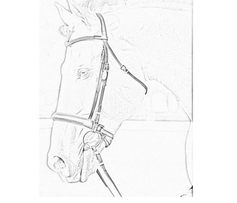 Pencil Sketch Of Horse With Bridle Pillow Square Fabric