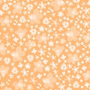 Flora Clementine