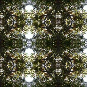 Leaves kalidescope