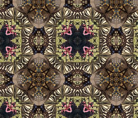 butterfly wings 3 fabric by kociara on Spoonflower - custom fabric