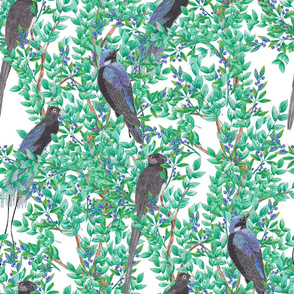 Birds in Trees (large scale)