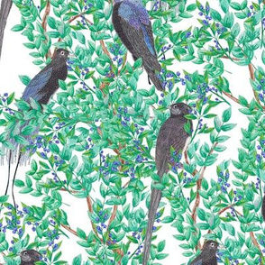 Birds in Trees (small scale)
