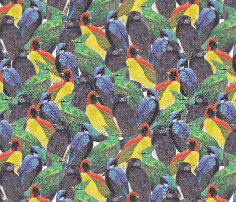 Birds_birds_birds_shop_preview