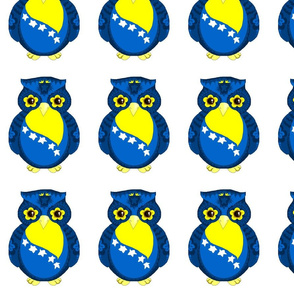 Blue & Yellow Owl