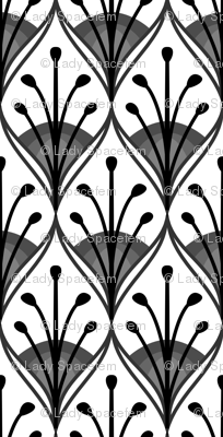 Peacock feathers black and white