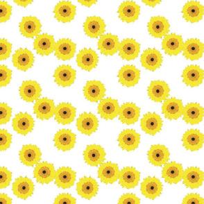 Sunflower - Yellow