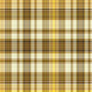 The Plaid with the Yellow Line