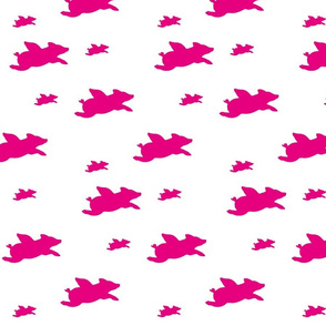 hot pink flying pigs