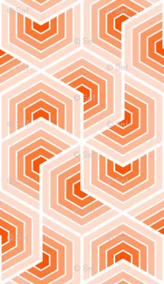 02553554 : chevron 6 shells