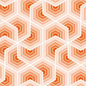 02553554 : chevron 6 shells : Or