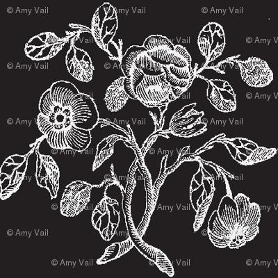 Tiny White Caslon Roses