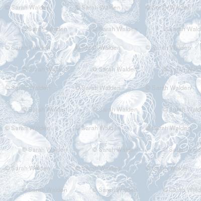 Jellyfish ~ Versailles Fog and White Swarm