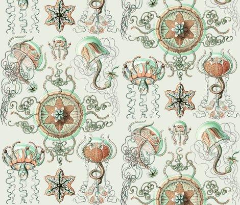 Rrhaeckel_trachomedusae_jellyfish_2_-_1904_shop_preview