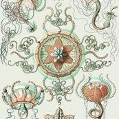 Rrhaeckel_trachomedusae_jellyfish_2_-_1904_shop_thumb