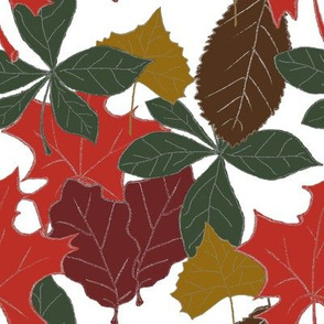 Leaves of Fall (white background)
