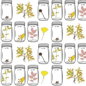 Autumn Specimens