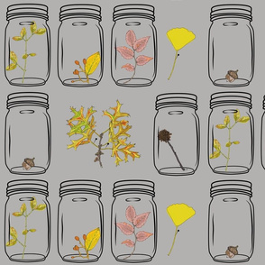Autumn Specimens in Grey