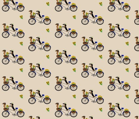 Frodosam_bicycle_newtaupe_shop_preview