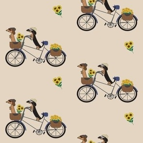 Dachshunds on Bicycle by Sudachan - Brown