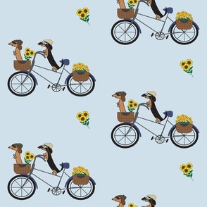 Dachshunds on Bicycle by Sudachan - Light Blue