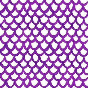 Purple Scallops