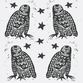Basic Owls
