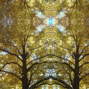 Autumn Branches Original