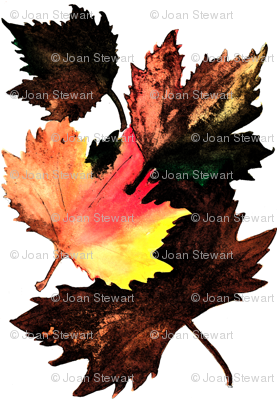 Maple_Leaf_Darkened