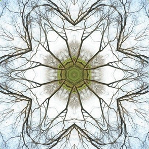 Fallen Leaves - Tree Mandala