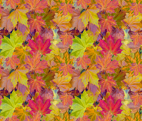 Fantastic Fall Leaves  -small fabric by koalalady on Spoonflower - custom fabric