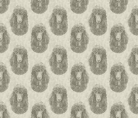 Irish Water Spaniel faces - tan fabric by rusticcorgi on Spoonflower - custom fabric