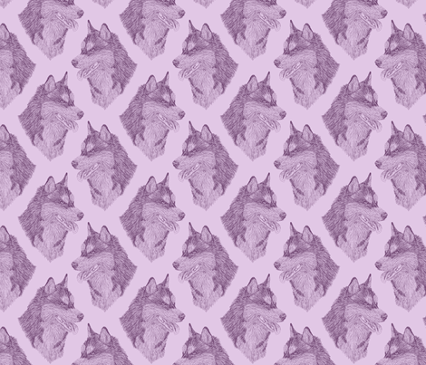 Siberian Husky Head Sketch Lavender Wallpaper Rusticcorgi